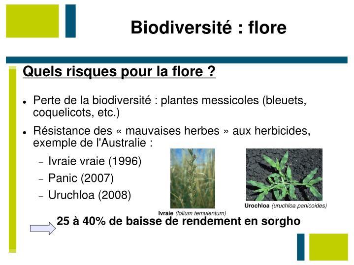 Biodiversité : flore