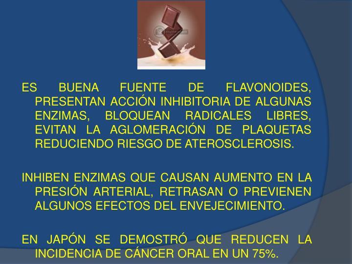ES BUENA FUENTE DE FLAVONOIDES,