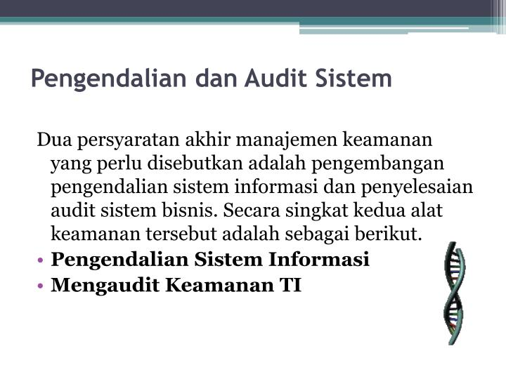 Pengendalian dan Audit Sistem
