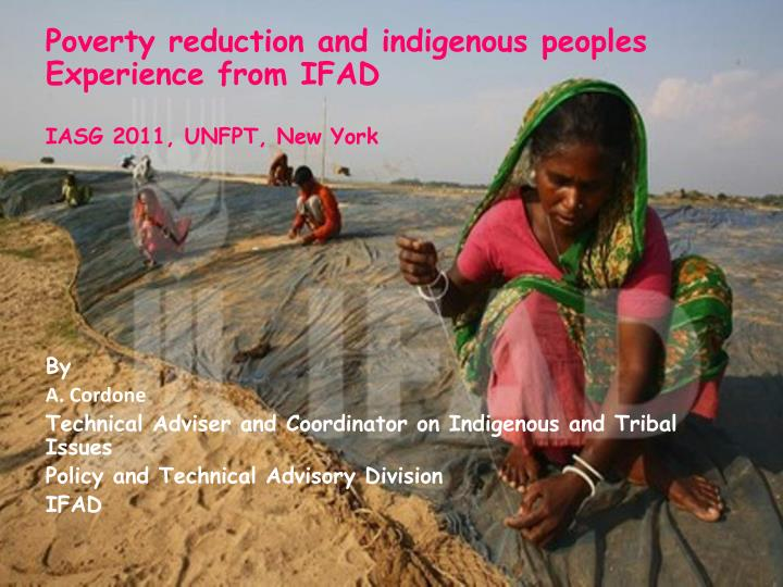 Poverty reduction and indigenous peoples Experience from IFAD
