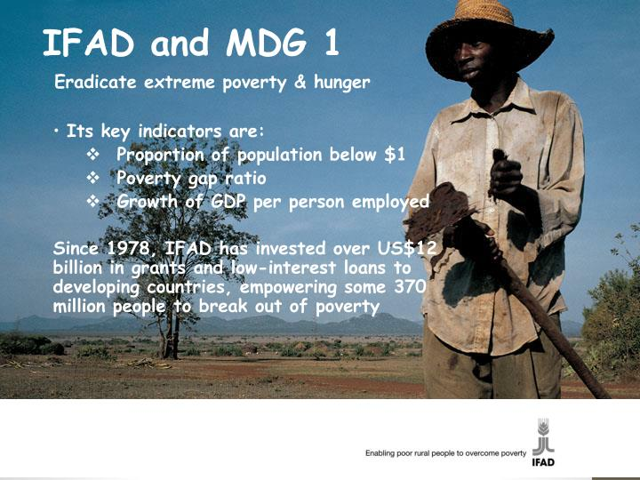 IFAD and MDG 1