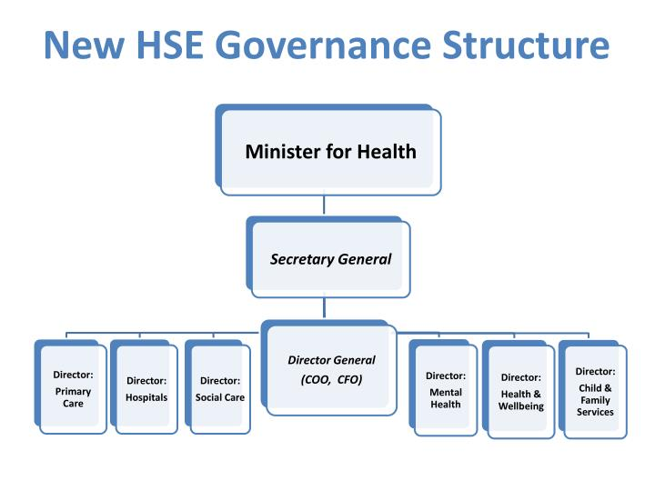 new hse governance structure n.