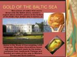 gold of the baltic sea