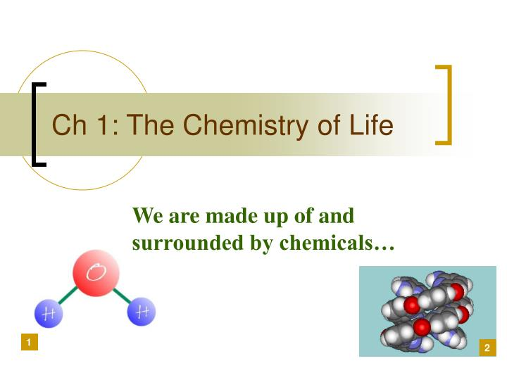 ch 1 the chemistry of life n.