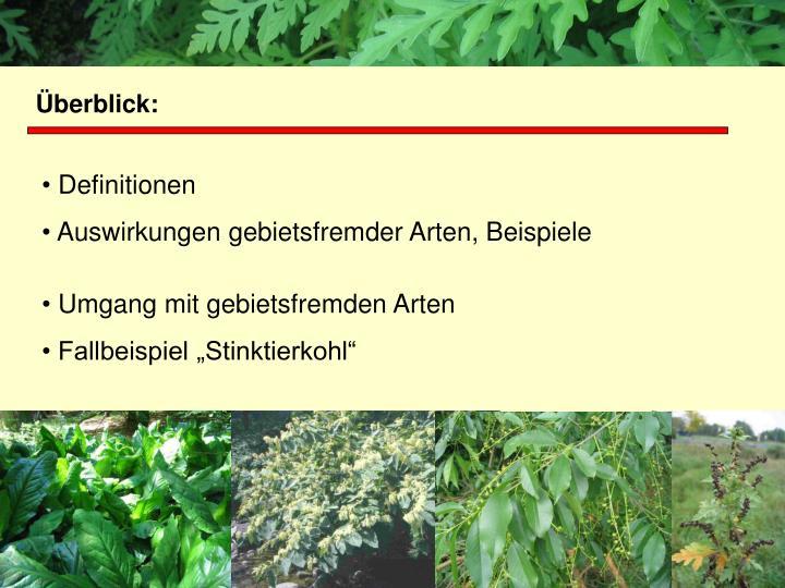 Projektgruppe Biodiversität und