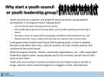 why start a youth council or youth leadership group