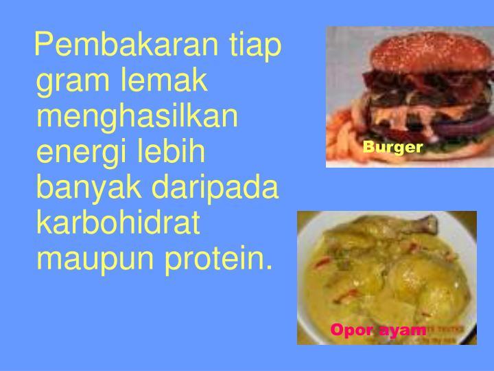 Pembakaran tiap gram lemak menghasilkan energi lebih banyak daripada karbohidrat maupun protein.