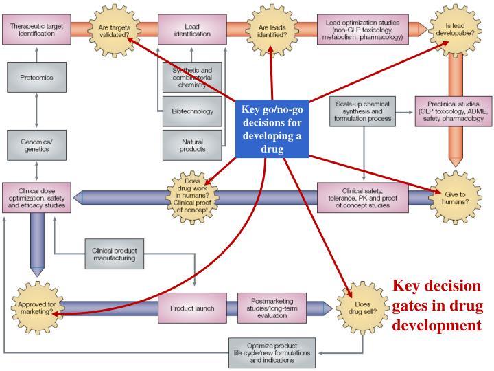Key go/no-go decisions for developing a drug