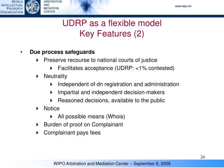 UDRP as a flexible model