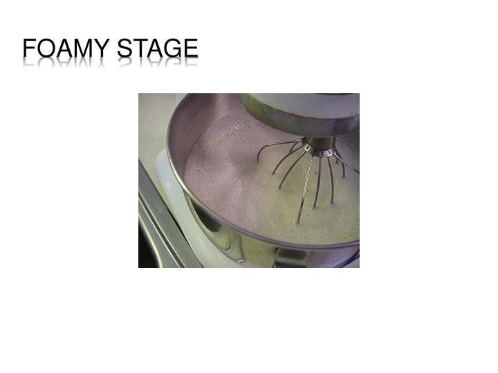 Foamy stage