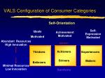 vals configuration of consumer categories