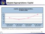 adopted appropriations capital