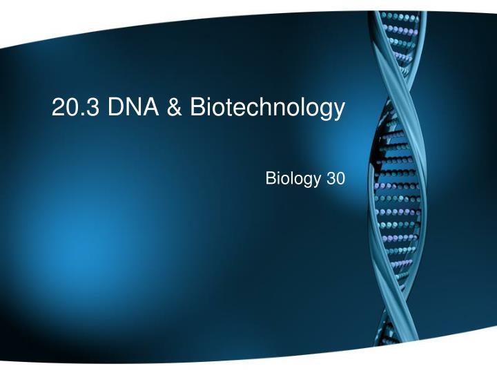 20 3 dna biotechnology n.