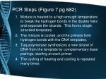 pcr steps figure 7 pg 682