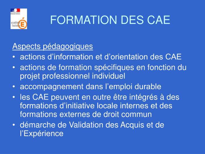 FORMATION DES CAE