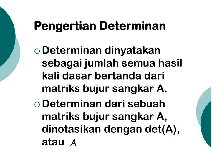 Pengertian determinan