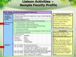 liaison activities sample faculty profile