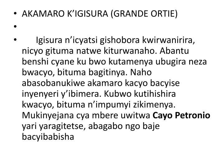 AKAMARO K'IGISURA (GRANDE ORTIE)