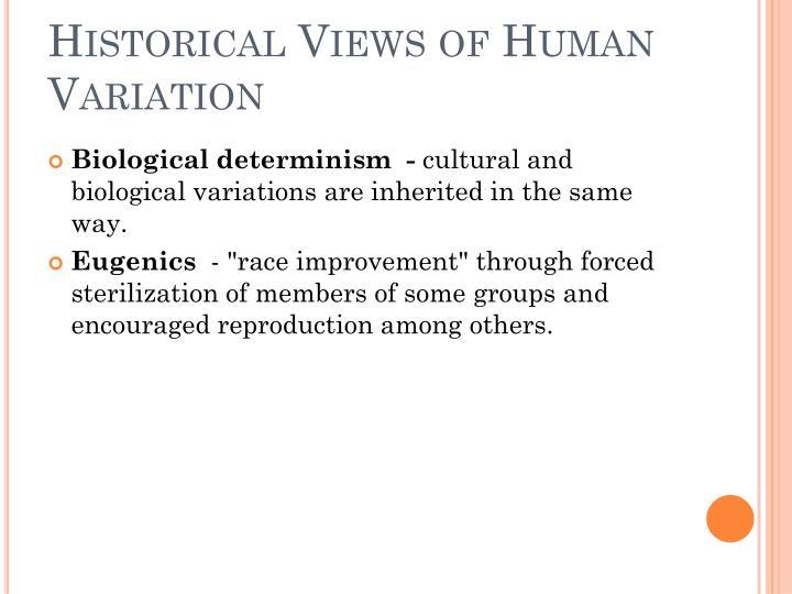 Historical views of human variation