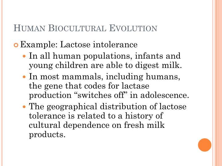 Human Biocultural Evolution