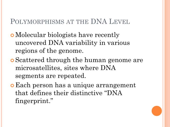 Polymorphisms at the DNA Level