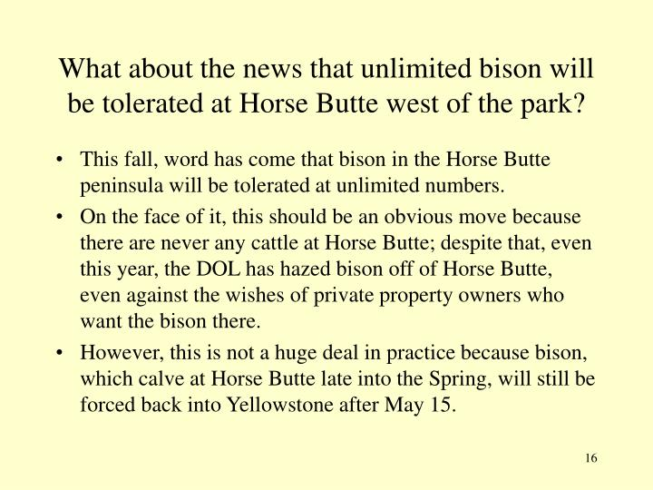 What about the news that unlimited bison will be tolerated at Horse Butte west of the park?