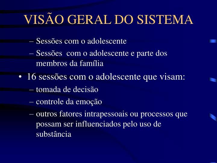 VISÃO GERAL DO SISTEMA