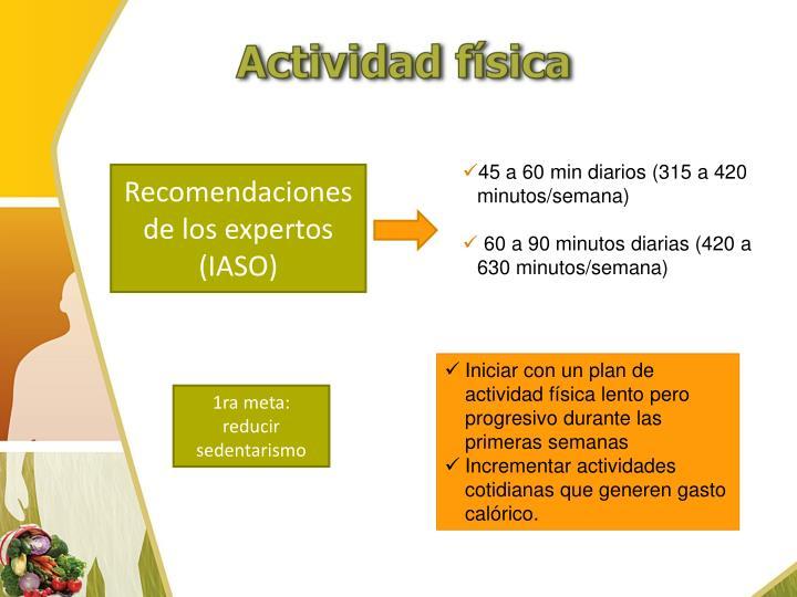 45 a 60 min diarios (315 a 420 minutos/semana)