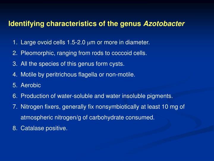 Identifying characteristics of the genus