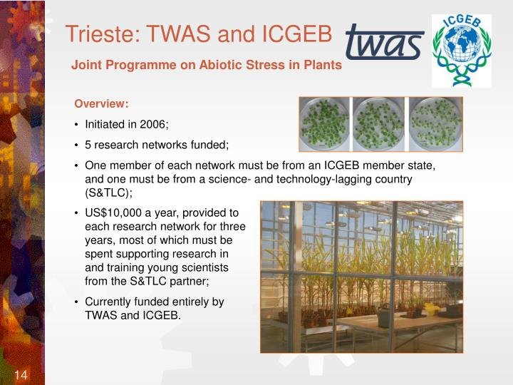 Trieste: TWAS and ICGEB