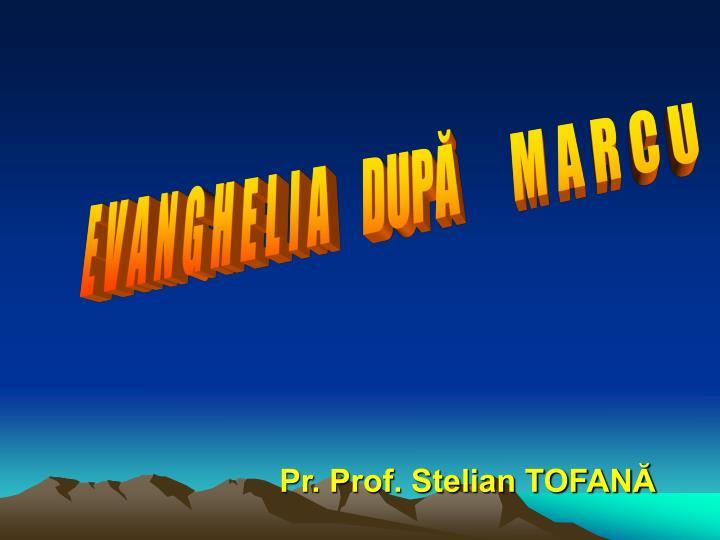 pr prof stelian tofan n.