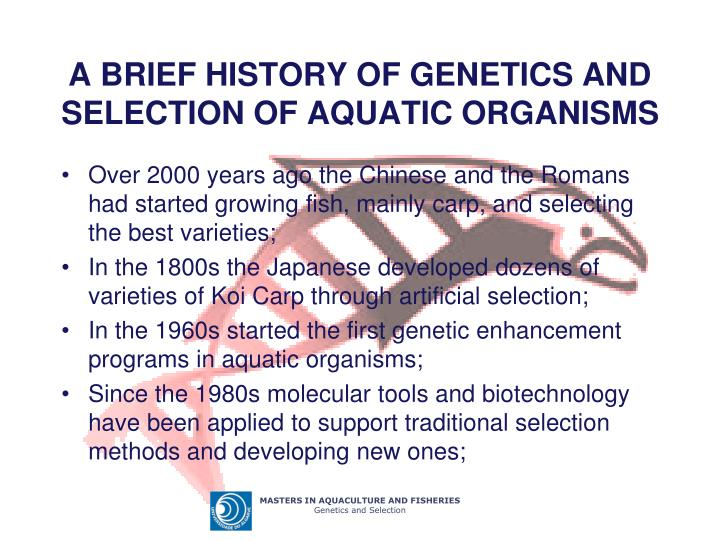 A brief history of genetics and selection of aquatic organisms