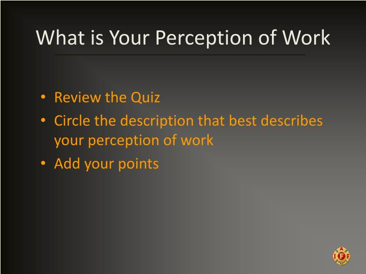 What is Your Perception of Work