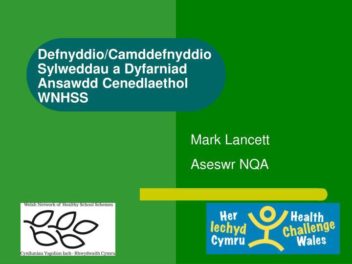 defnyddio camddefnyddio sylweddau a dyfarniad ansawdd cenedlaethol wnhss n.
