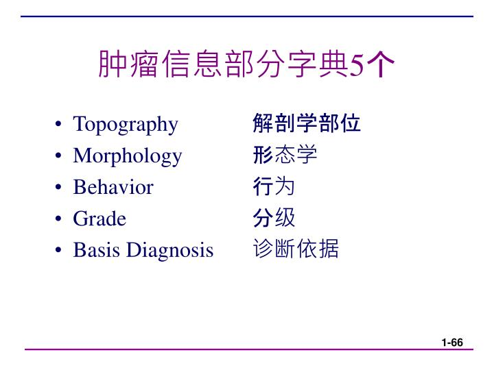 肿瘤信息部分字典