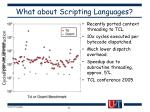 what about scripting languages