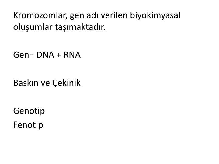 Kromozomlar, gen adı verilen biyokimyasal oluşumlar taşımaktadır.