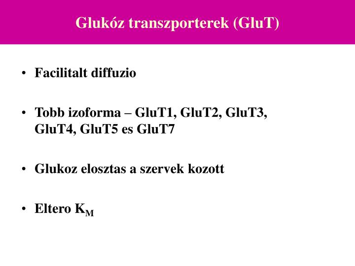 Gluk z transzporterek glut