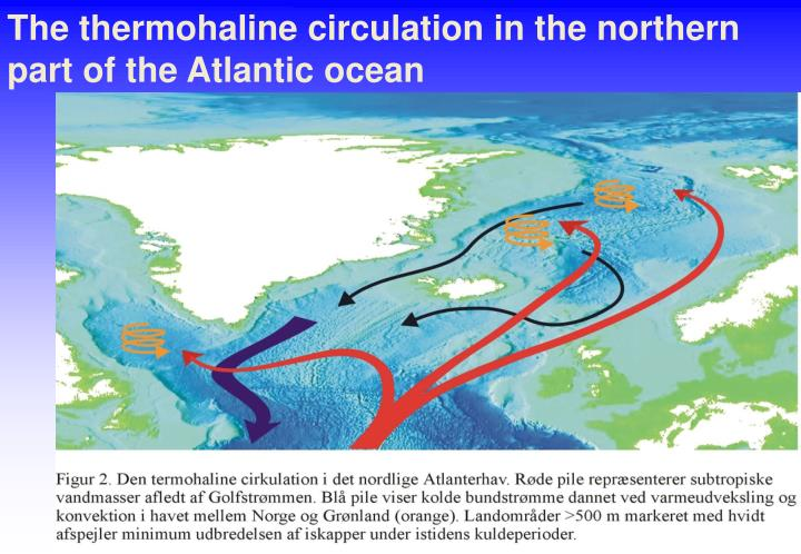 The thermohaline circulation in the northern part of the Atlantic ocean