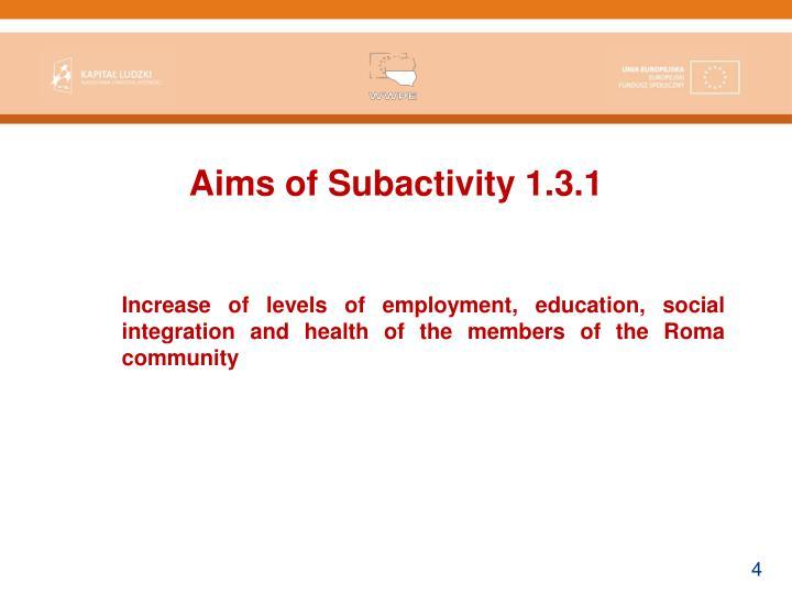 Aims of Subactivity 1.3.1