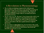 a revolution in phenomenology