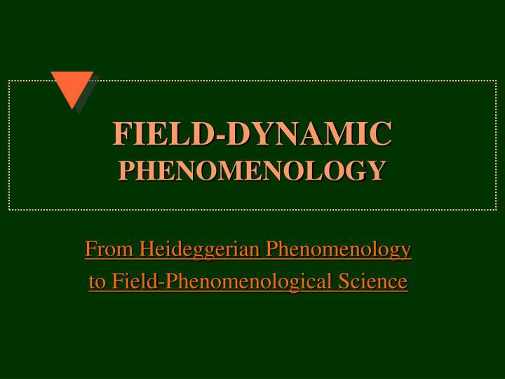 field dynamic phenomenology n.
