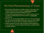 the field phenomenology of vision