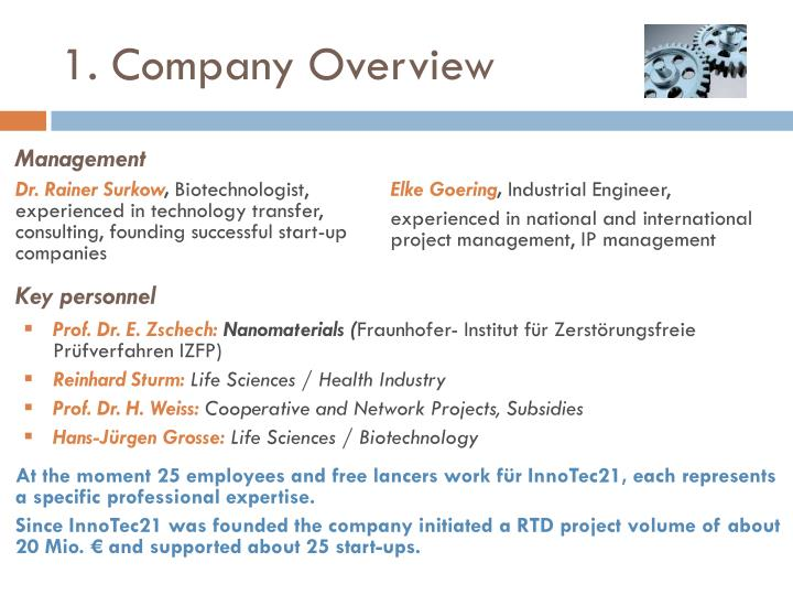 1 company overview
