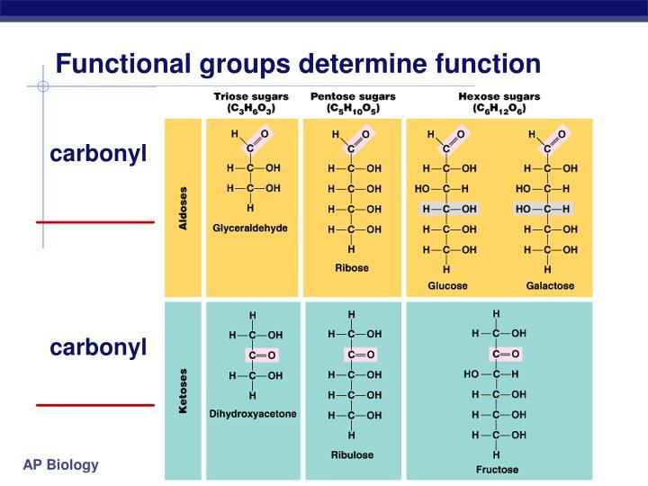 Functional groups determine function