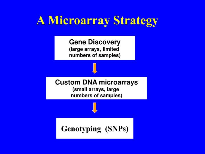 A Microarray Strategy