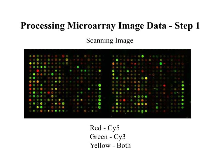 Processing Microarray Image Data - Step 1