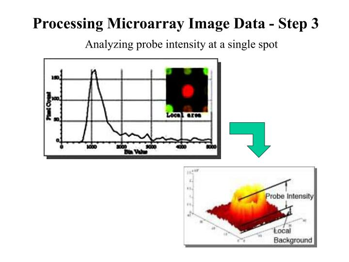 Processing Microarray Image Data - Step 3