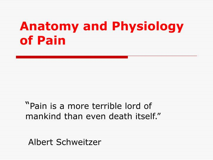 PPT - Anatomy and Physiology of Pain PowerPoint Presentation - ID ...