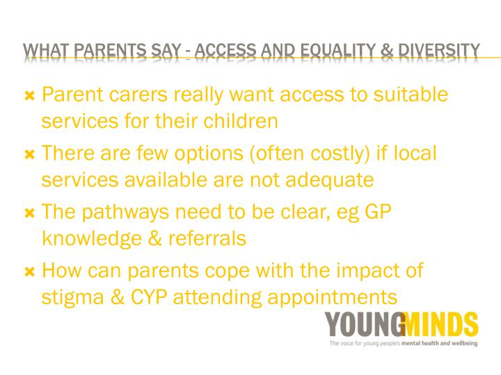 Parent carers really want access to suitable services for their children